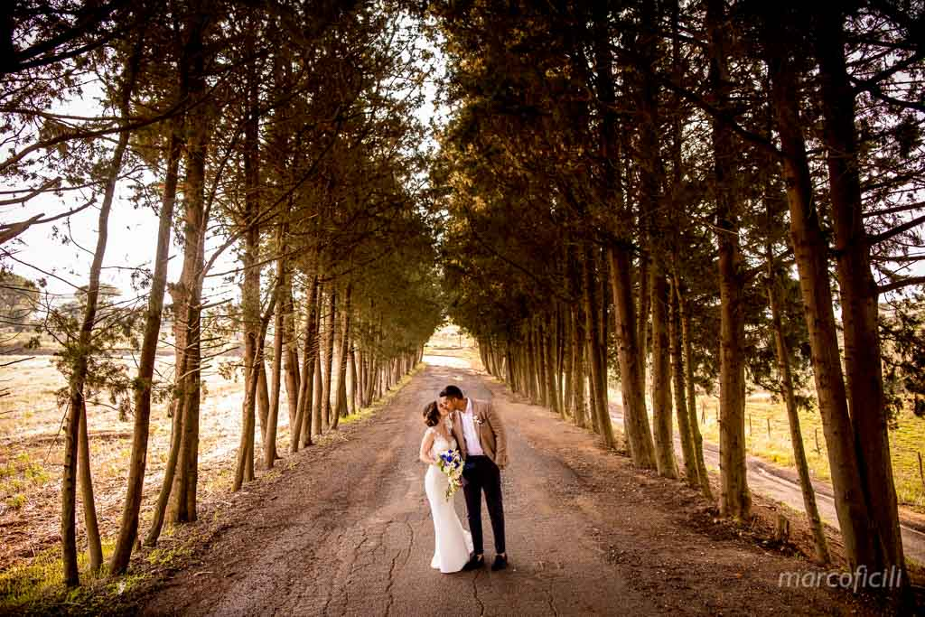 Camemi Castle Wedding portrait, wedding couple, bride, groom, trees,